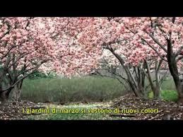 battisti giardini di marzo testo i giardini di marzo lucio battisti con testo