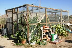 greenhouse gardening in the desert home outdoor decoration