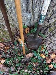 How To Clean And Oil by How To Clean And Oil Garden Tools