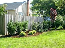 Privacy Garden Ideas Privacy Landscaping Along Fence What Are The Trees Along The Fence