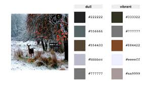winter color schemes fall and winter color palette inspiration