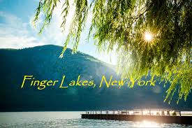 Healthcare Recruiter Job Description Primary Care Physician Jobs In Finger Lakes Region Ny C19656 Job
