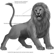 lion drawing tutorial drawing techniques learn