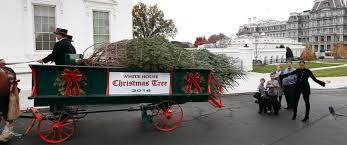 obama welcomes last white house tree abc news
