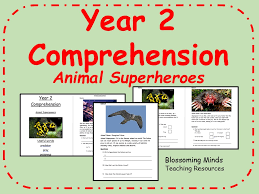 a new pet year 1 2 reading comprehension by elliotteducational