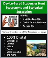 Landscaping Advertising Ideas The 25 Best Ecological Succession Ideas On Pinterest Landscape