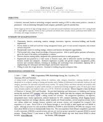 Resume Example Executive Or Ceo Careerperfectcom Resumes Example by 10 Ceo Resume Templates Free Word Pdf Ceo Resume Template