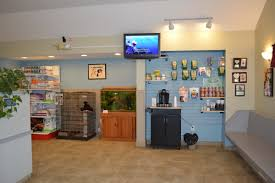 Fish Tank Reception Desk Take A Tour Of South Brunswick Animal Hospital Veterinarians