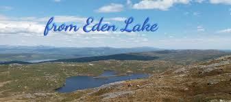 australian shepherd 1 jaar australian shepherds from eden lake home facebook