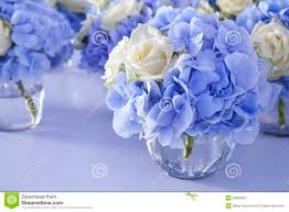 white and blue flowers amazing white blue flowers contemporary images for wedding gown