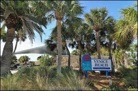 Venice Beach Florida Map by Venice Real Estate Venice Homes U0026 Condos Fl