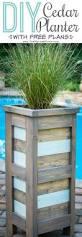 Patio Planter Box Plans by Best 25 Planter Box Plans Ideas On Pinterest Wooden Planter