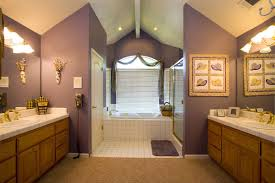 lavender bathroom paint