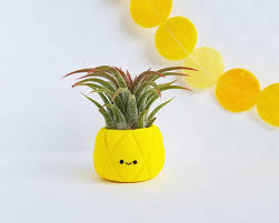 cute plant pineapple air planter gift for her mini planter tropical