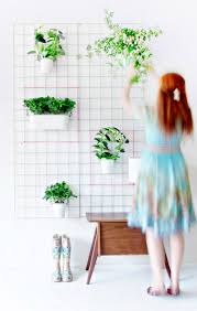 Wall Planters Indoor by Green Diy Sporty Planters And Spice