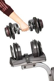 Adjustable Dumbbell Weight Bench Adjustable Dumbbell Set Adr24 By Bruteforce Renouf Fitness
