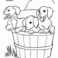 tag cute dog pictures print color cute dog colouring