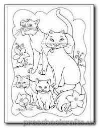37 kitten coloring pages images kittens