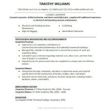 Resume Employment History Format by Example Of It Resume