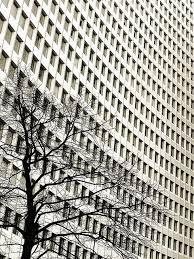 best 25 urban nature ideas on pinterest space architecture