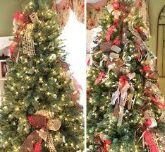 tree tips fix your tree