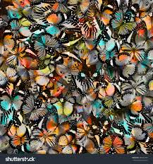 abstract pattern butterfly butterfly beautiful pattern abstract background texture stock photo