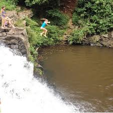 Gardeners Falls Maleny - 7 best waterfalls and swimming holes on the sunshine coast get