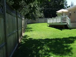 electric privacy fence trees bamboo privacy fence trees u2013 gazebo