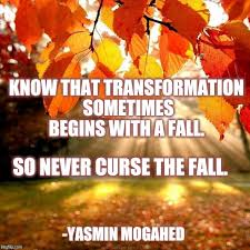 Autumn Memes - transformation begins with a fall imgflip