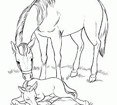 amazing free coloring pages horses 36 coloring pages animals