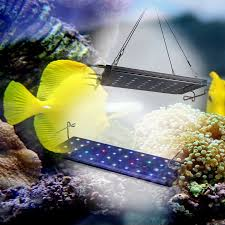 best lighting for corals check out this product on alibaba com app best selling products