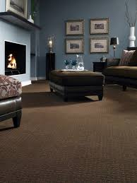 will dark carpet suit for the living room household 1000 ideas about dark brown carpet on pinterest carpets