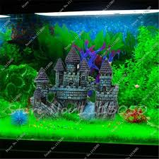 Asian Themed Fish Tank Decorations Aliexpress Com Buy 500 Pcs Java Fish Tank Fern Aquatic Seeds