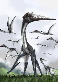 absurd creature of the week the 16 foot tall reptilian stork that