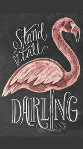 zombie flamingo spirit halloween good advice ponder these words pinterest flamingo pink