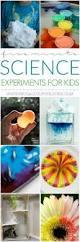 5878 best science fair images on pinterest preschool science