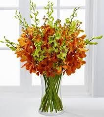 orchid flower arrangements day luxury orchid bouquet flower arrangement in burbank ca