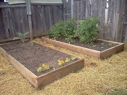 backyard homesteading design and ideas of house