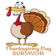 thanksgiving turkey eat beef
