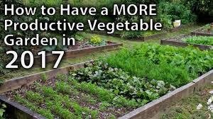 Permaculture Vegetable Garden Layout 10 Ways To Make Your Vegetable Garden More Productive In 2017