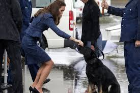 20 Great Dog Walks Around Sydney And Central Coast Australian Prince William And Kate Arrive In Australia Mirror Online