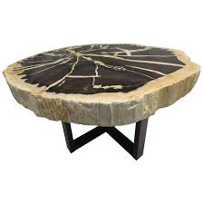 Petrified Wood Bench Petrified Wood Tables 176 For Sale At 1stdibs