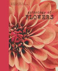 anthology of flowers casting a modern light on an old muse