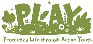 protecting through active youth play madagascar lemur