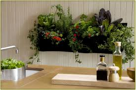 hanging wall planters home design ideas