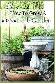 Herb Garden Winter - herb garden outdoor u2013 piccha