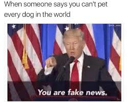 You Can T Explain That Meme - you are fake news memes a good investment high versatility here