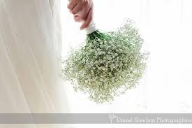 Baby Breath Flowers Baby U0027s Breath Bouquet The Bouquets Of Ascha Jolie Wedding
