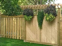Backyard Privacy Ideas Lattice Ideas Backyard Privacy Ideas Backyard Privacy
