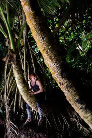 Hawaii travel trunks images The big island of hawaii travel dustin finkelstein photography jpg